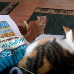 "My cats ""helping"" me follow the Ravelry pattern."
