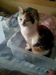 Wish I could pack Mina...
