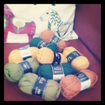 New yarn, new project.