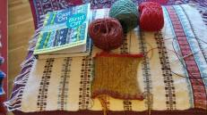 Picot edge test swatch.